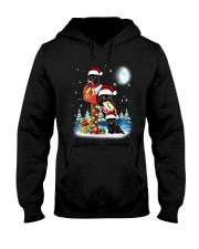 Black Cat In Mailbox Hooded Sweatshirt thumbnail