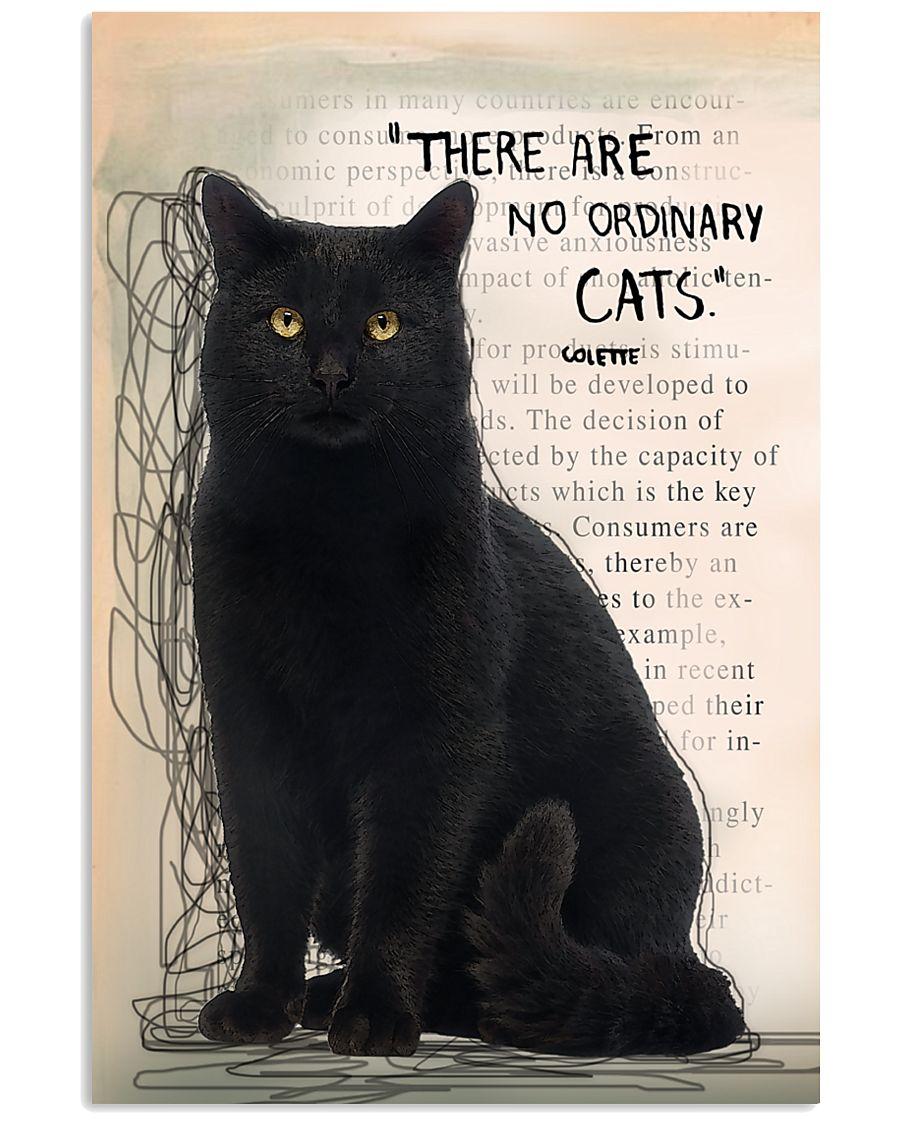 Black Cat No Ordinary  11x17 Poster