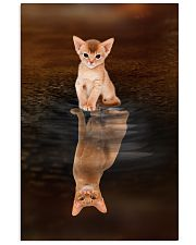 Abyssinian Cat Reflection Poster 1112 11x17 Poster front