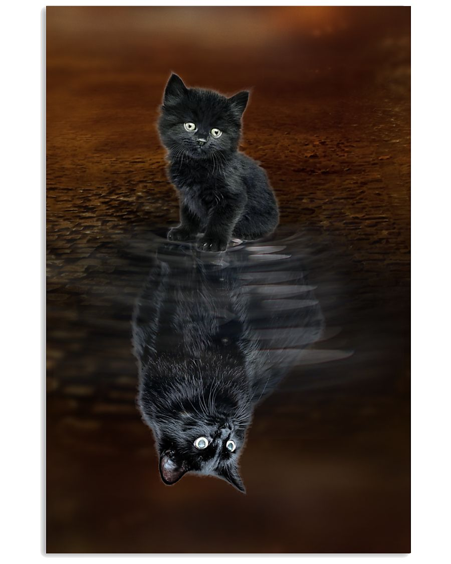 Chantilly Cat Reflection Poster 1112  11x17 Poster