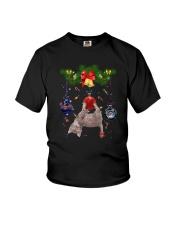 Cat funny Xmas Youth T-Shirt thumbnail