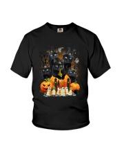 Black Cat Great HW 1608 Youth T-Shirt thumbnail