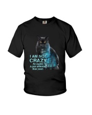 Cat I am not crazy 1809 Youth T-Shirt thumbnail