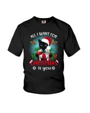 Black cat for Christmas Youth T-Shirt thumbnail