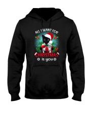 Black cat for Christmas Hooded Sweatshirt thumbnail