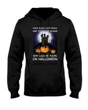 Black cat prowl 3007 Hooded Sweatshirt thumbnail