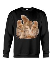 Persian Five Crewneck Sweatshirt thumbnail