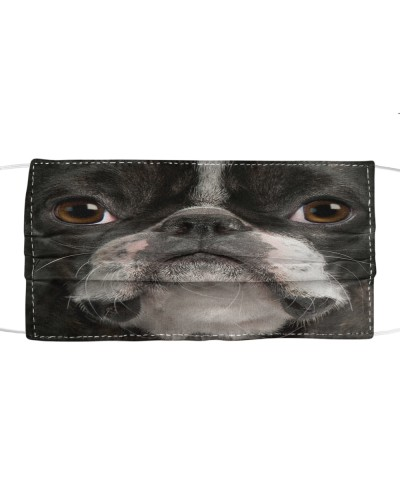 Boston Terrier Limited Edition