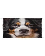 Bernese Mountain Limited Edition Cloth face mask front