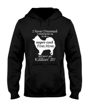 Limited Edition - Pomeranian Mother Days Gift Hooded Sweatshirt thumbnail