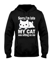 Cats Hooded Sweatshirt front
