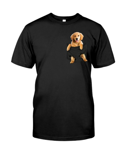 Golden Retriever in pocket