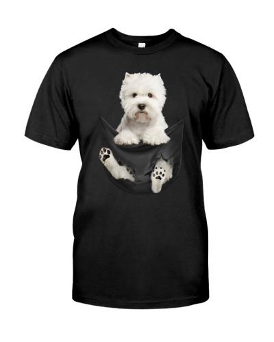 West Highland White Terrier In Pocket
