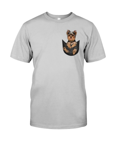 Yorkshire Terrier In Pocket