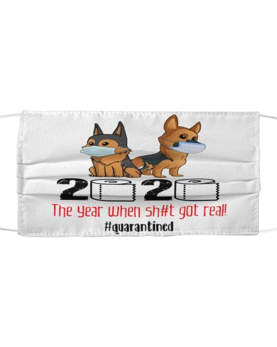 German Shepherd quarantined 2020