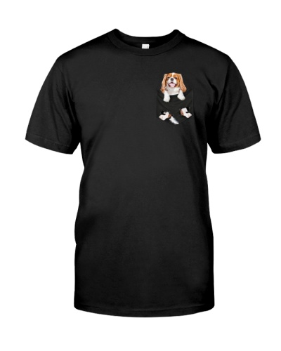 Cavalier King Charles Spaniel in pocket