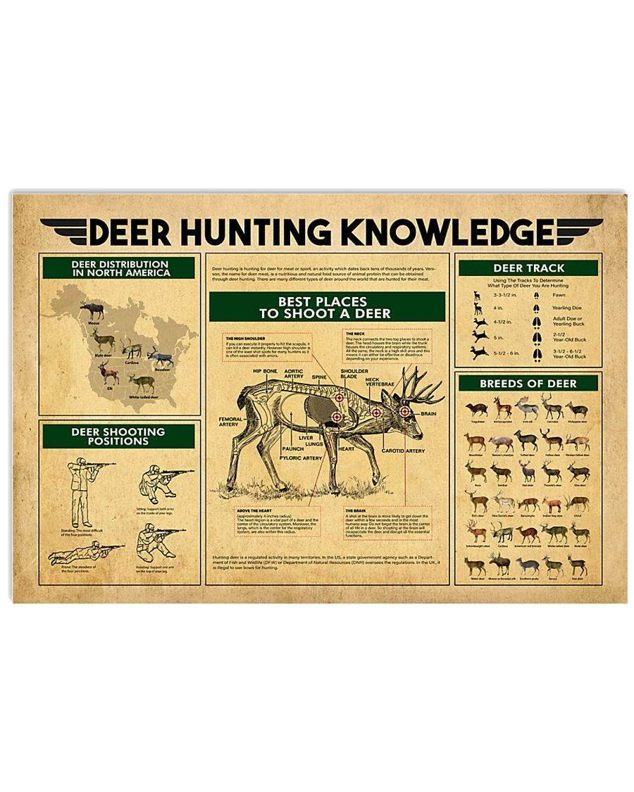 Deer Hunting Knowledge 17x11 Poster