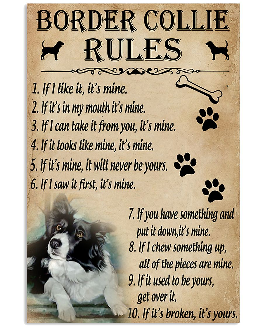 Funny Rules For Your Dog Border Collie 11x17 Poster