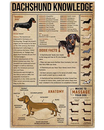 Knowledge Dachshund Wiener Dog