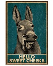 Hello Sweet Cheeks Laugh Donkey 16x24 Poster front