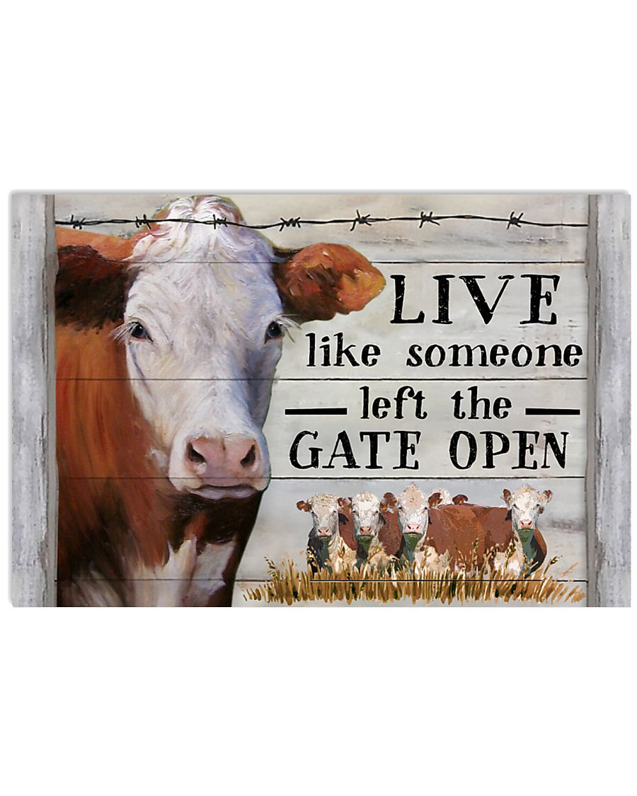 Hereford Cattle Live Like Someone Left Gate Open 24x16 Poster