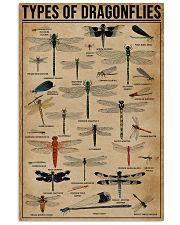 Types Of Dragonflies 16x24 Poster front