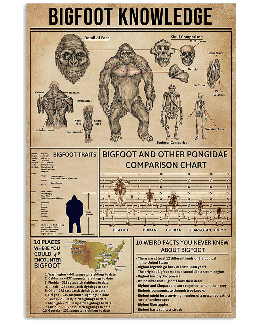 Bigfoot Knowledge 11x17 Poster