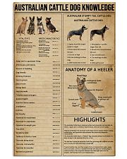Australian Cattle Dog Knowledge 11x17 Poster front