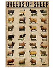 Breeds Of Sheep Farm 11x17 Poster front