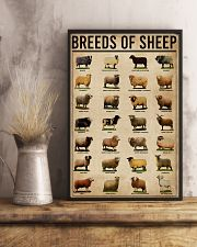 Breeds Of Sheep Farm 16x24 Poster lifestyle-poster-3