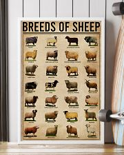 Breeds Of Sheep Farm 16x24 Poster lifestyle-poster-4