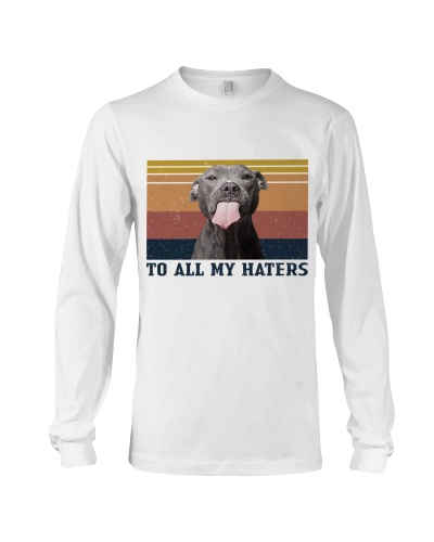 Pit Bull To All My Haters