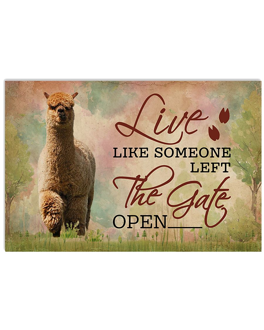 Live Like Someone Left The Gate Open Alpaca 17x11 Poster