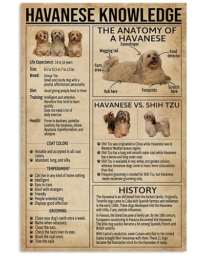 Havanese Knowledge
