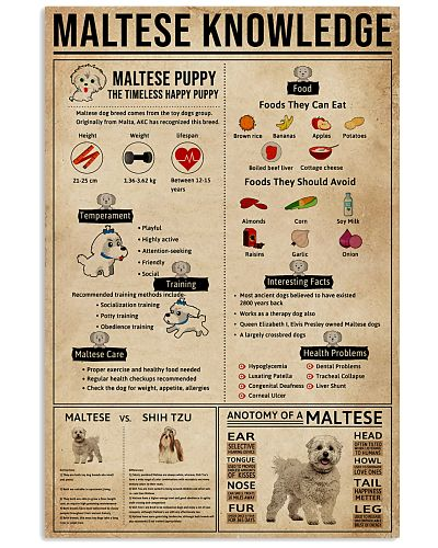 Maltese Knowledge Dogs