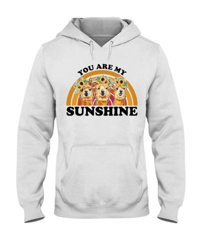 You Are My Sunshine Alpaca