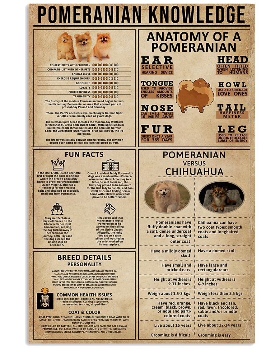 Pomeranian Knowledge 11x17 Poster