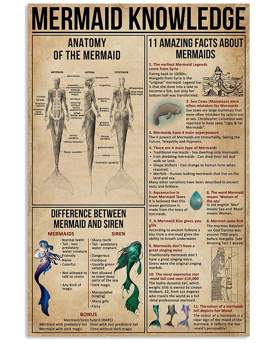 Mermaid Knowledge 16x24 Poster