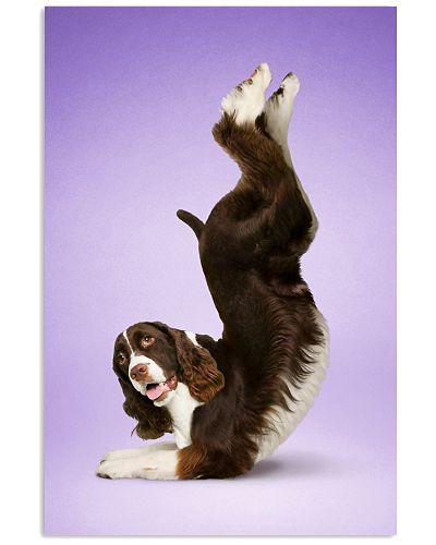 Yoga Pose English Springer Spaniel