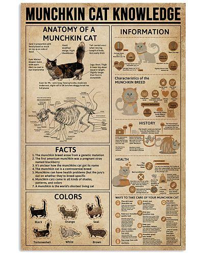 Munchkin Cat Knowledge