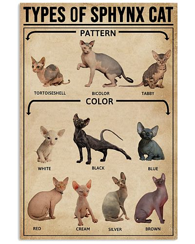 Types Of Sphynx Cat