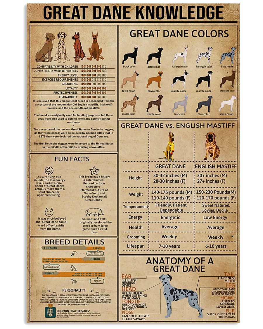 Great Dane Knowledge 11x17 Poster