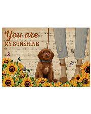 Vintage Sunflower Music Sheet Labradoodle 17x11 Poster front