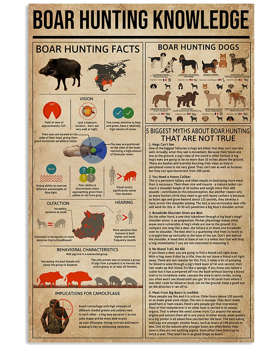 Boar Hunting Knowledge 11x17 Poster