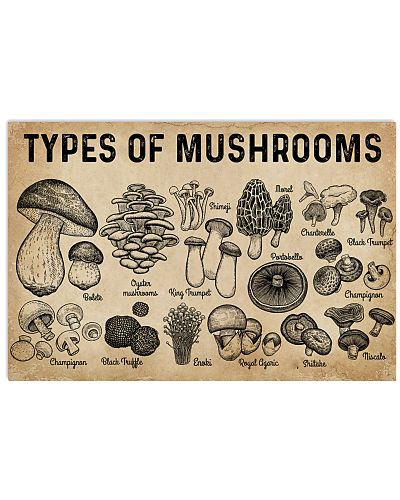 Types Of Mushrooms
