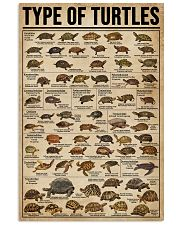 Type Of Turtles 16x24 Poster front