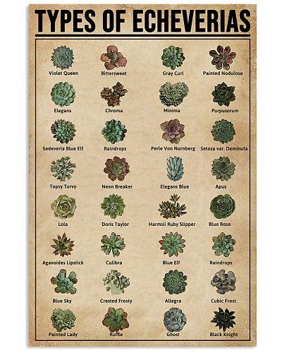 Types Of Echeveria Succulents