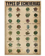 Types Of Echeveria Succulents 11x17 Poster front