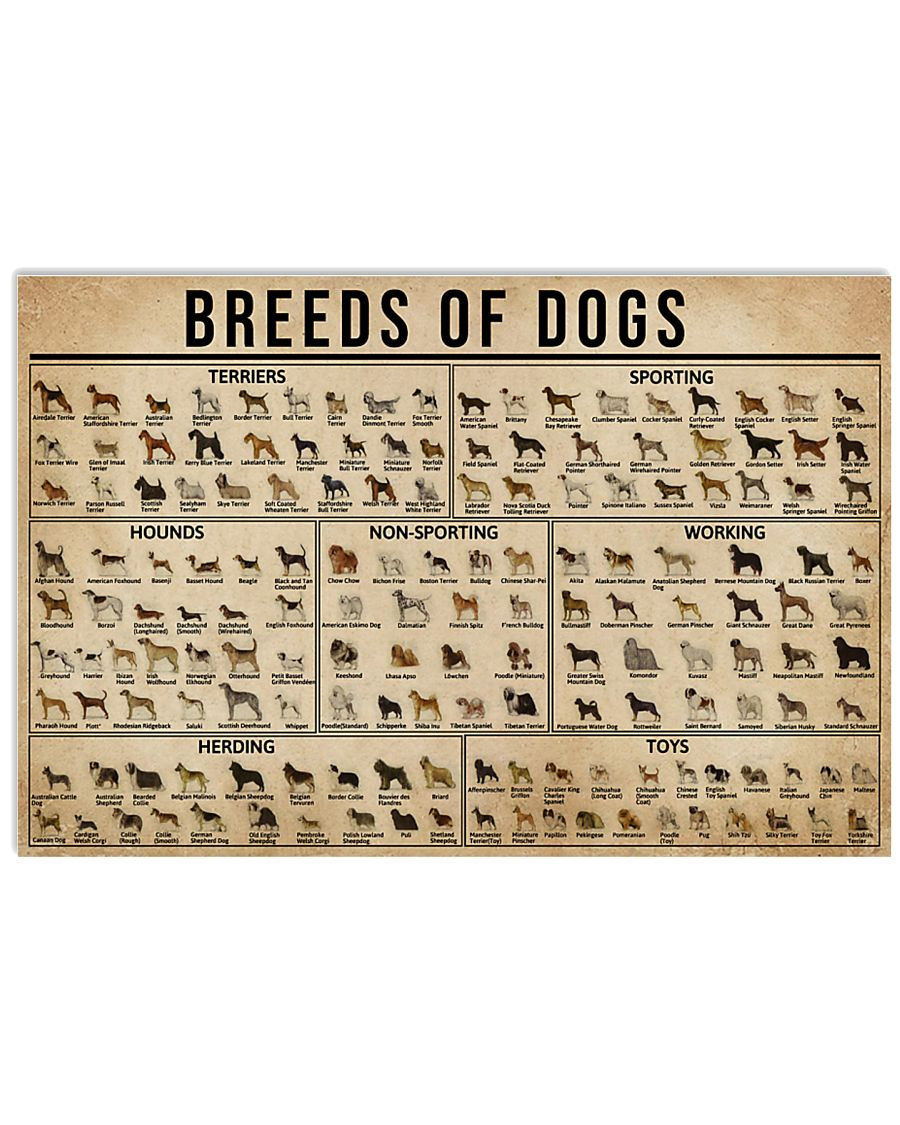 Breeds Of Dogs 17x11 Poster