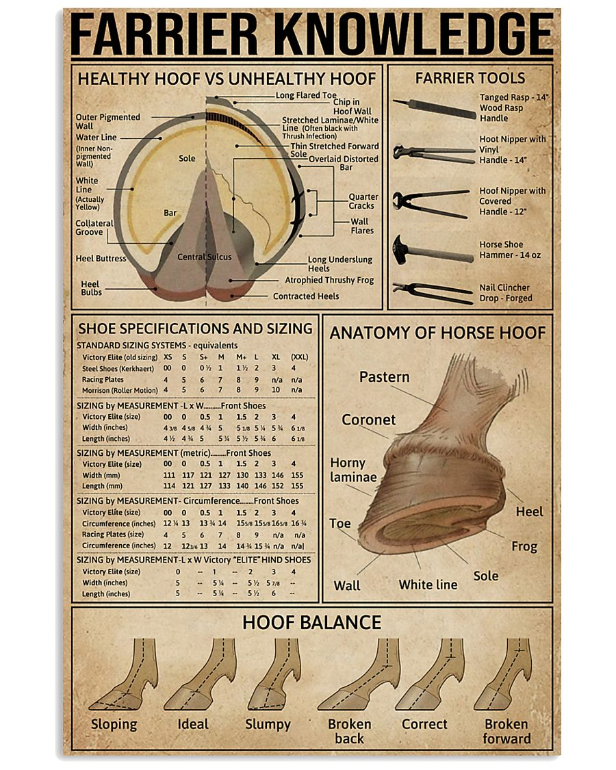 Farrier Knowledge 11x17 Poster